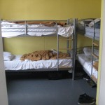 Picadilly Backpacker Hostel