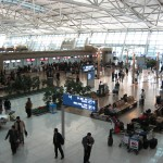 Understanding the Airport Customs Process